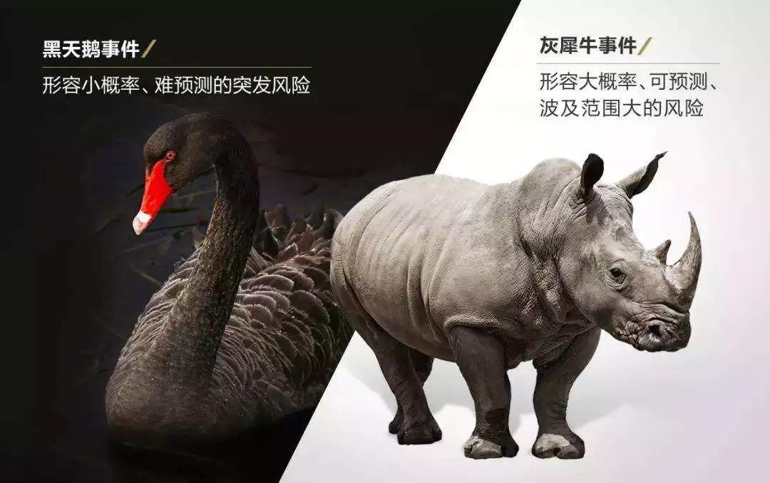 """中国房地产面临的两头""""灰犀牛"""""""