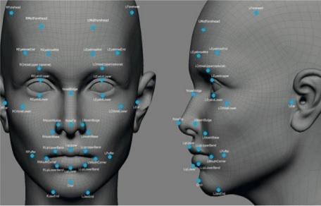 欧美人脸标记素材