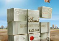 张斌:应给地方融资平台准备两万张奖状 两万张罚单