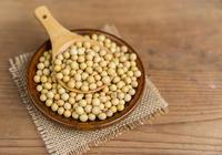 5月以来南美大豆占进口90%,中储粮构建多元化进口大豆供应体系