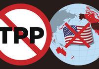 11国公布TPP最终版本:多项美国力主的规则被搁置