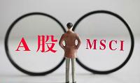 【基金经理解剖】A股估值分歧加剧,MSCI中国指数基金前景如何?