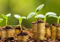 降低绿色融资的资本要求:文献综述