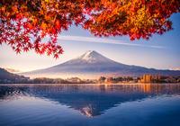 日本央行前高官透露:不少委员决意结束超宽松政策,甚至加息