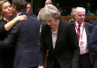 """退欧方案只有两个""""我的,或者没协议""""——一个英国""""国贼""""的诞生"""