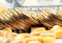 花旗银行:中国对黄金市场的影响可能会增大