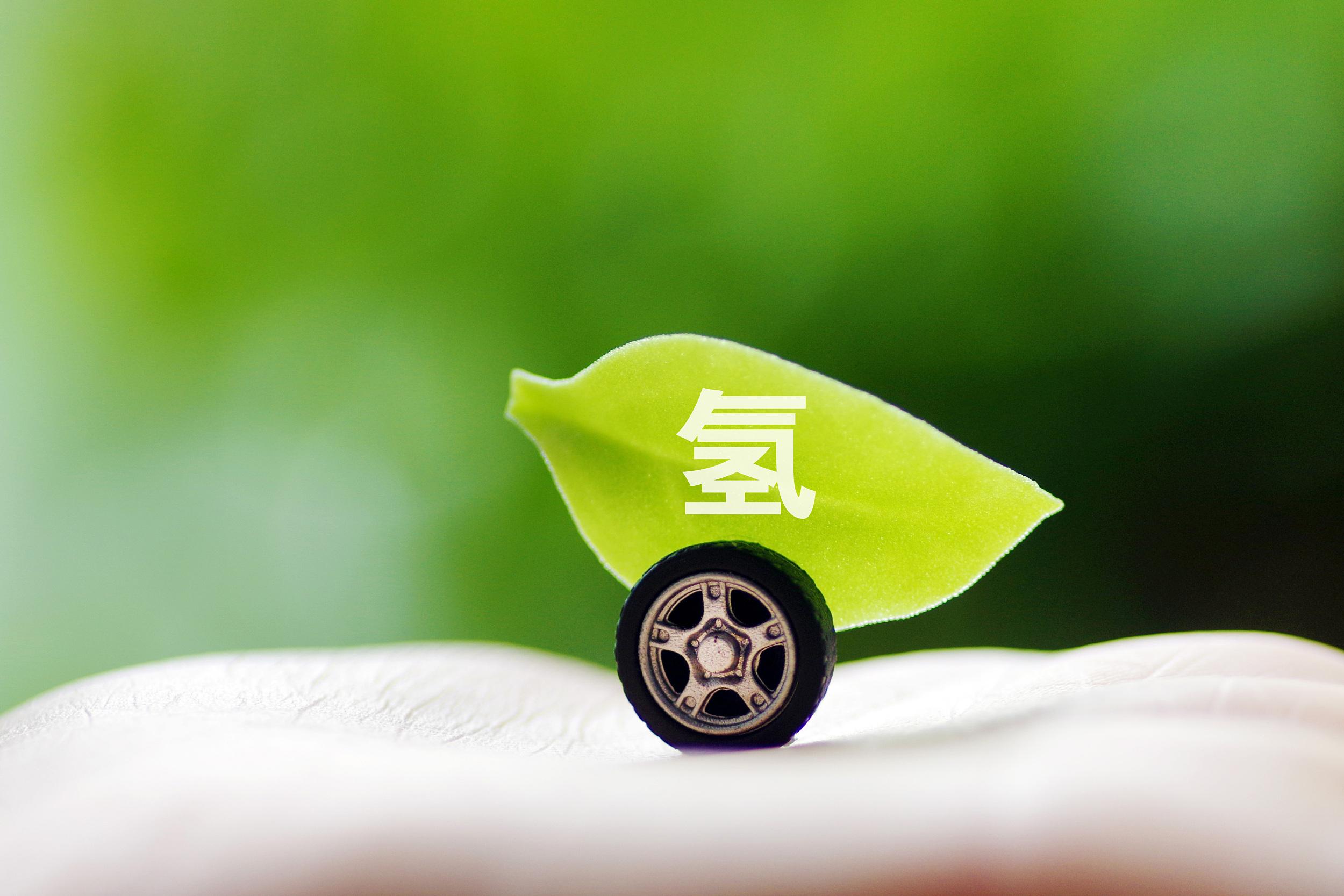 隆基的未来:光伏+绿氢
