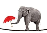 """2018年银行""""大象群舞""""?抑或""""戴维斯双击""""?这位基金经理说透了……"""